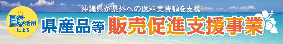 沖縄もずくその他